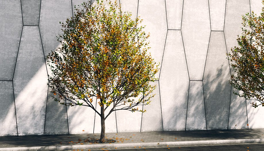 Free 3D Model – Street tree | VizPeople Blog