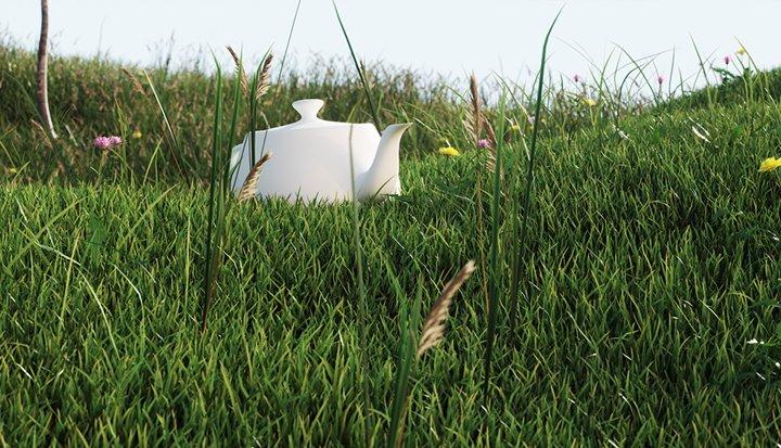 Free 3d Model Grass Vizpeople Blog